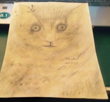 Schönes Katzenbild Grösse A4 Blatt