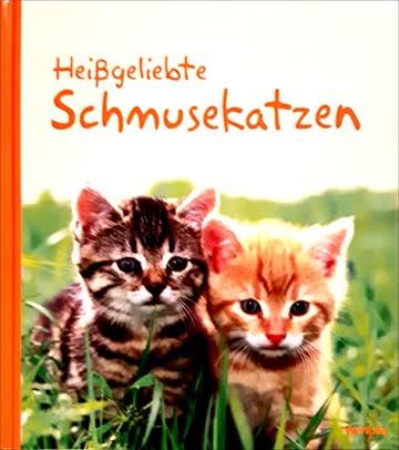 Heißgeliebte Schmusekatzen
