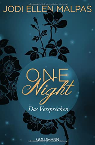 One Night - Das Versprechen: Die One Night-Saga 3