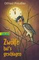 Zwölfe hat's geschlagen: Dreimal dreizehn Geschichten von Schätzen und ihren Hütern, von Hexen und Zaubermeistern, von armen Seelen und mancherlei Geisterspuk