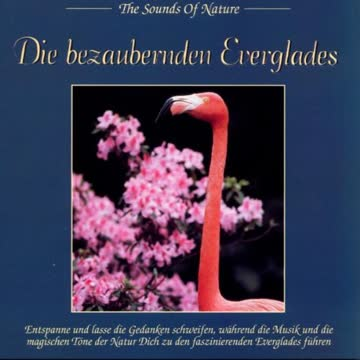 The Sounds of Nature - Die bezaubernden Everglades      The Sounds of Nature - Die bezaubernden Everglades     The Sounds of Nature - Die bezaubernden Everglades     The Sounds of Nature - Die bezaubernden Everglades     The Sounds of NatureThe Sounds of Nature - Die bezaubernden Everglades