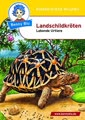 Benny Blu 02-0129 Landschildkröten