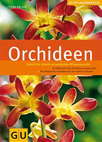 Orchideen: Schritt für Schritt zu exotischer Pflanzenpracht