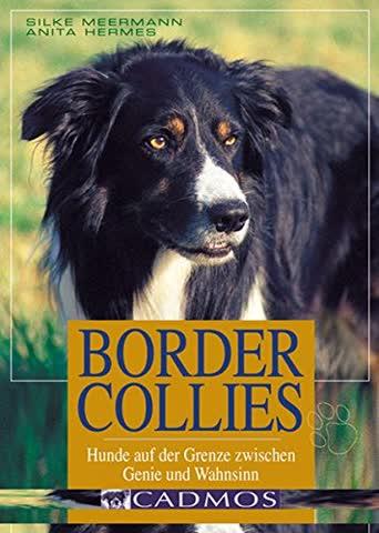 Border Collies: Hunde auf der Grenze zwischen Genie und Wahnsinn (Cadmos Hundebuch)