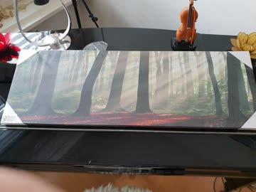 Schönes Waldbild, Noch Originalverpackt