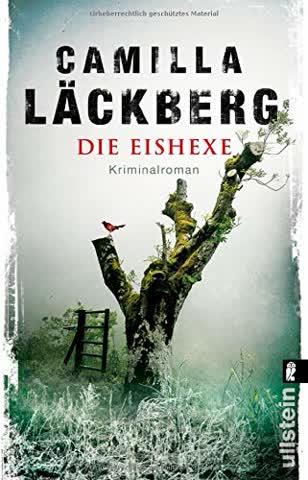 Die Eishexe: Kriminalroman (Ein Falck-Hedström-Krimi, Band 10)