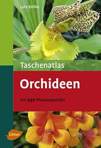 Taschenatlas Orchideen - Mit 340 Pflanzenporträts (Taschenatlanten)