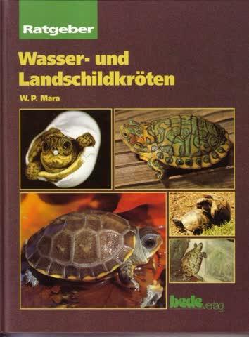 Wasser- und Landschildkröten.