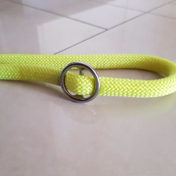 Zugstop-Halsband