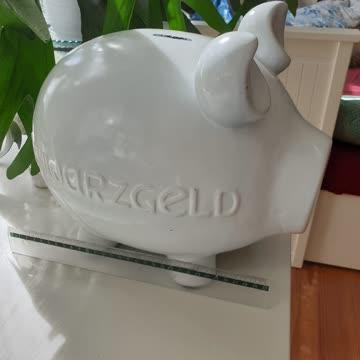 Riesen Sparschweinca 35 cm Gross Abholung