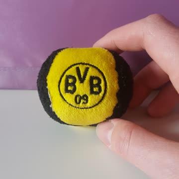 BVB Rasselball