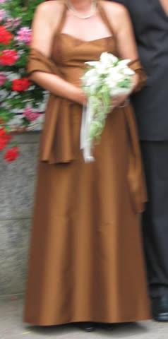 Gala-(od. Hochzeitskleid)