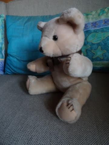 Teddybär - Grösse 35 cm, waschbar, unbespielt