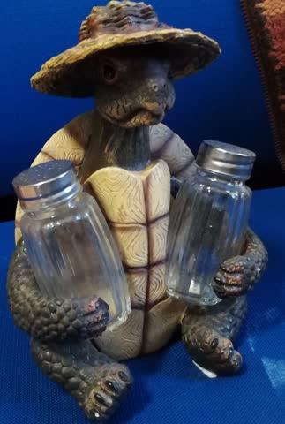 """Menage salz/pfeffer: """"florida-meeresschildkröte"""" dude"""