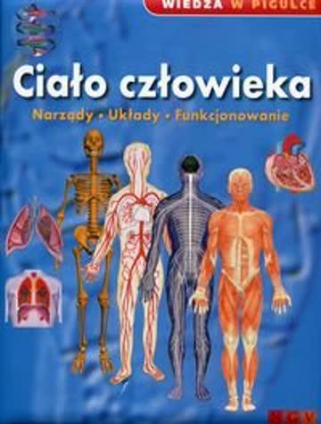 Erlebniswelt Wissen Der Körper Organe Körpersysteme Funktionen