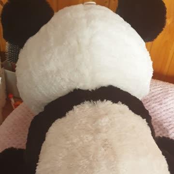 Pandaplüsch ca 50cm hoch