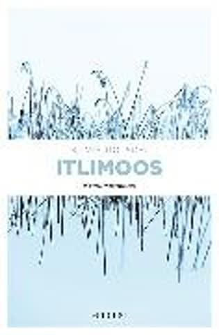 Itlimoos: Kriminalroman