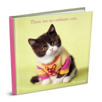 There Are No Ordinary Cats (Rachael Hale Giftbooks)
