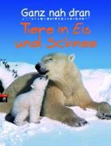 Ganz nah dran: Tiere in Eis und Schnee