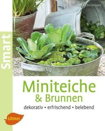 Miniteiche & Brunnen