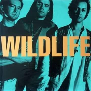 Wildlife - Same (1990)