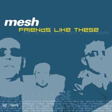 Mesh - Friends Like These