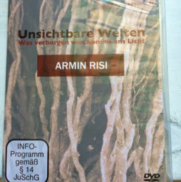 Unsichtbare Welten (Armin Risi)