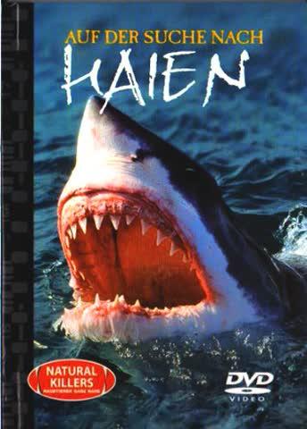 Auf der suche nach Haien