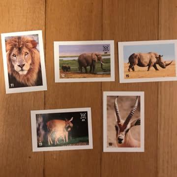 Animal Planet Stickers