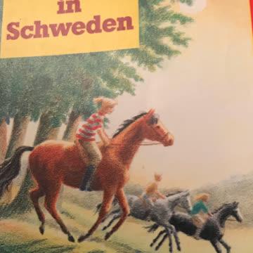 Pferdesommer in Schweden
