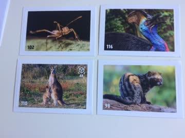Animal Planet Mania Stickers