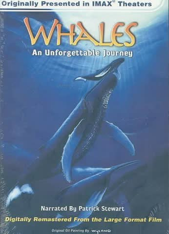 Whales: An unforgettable journey - (Imax)