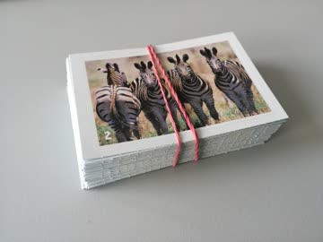 Migros Animal Planet Mania - 80 Sticker (Set 2)