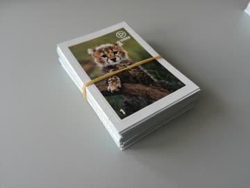 Migros Animal Planet Mania - 80 Sticker (Set 1)