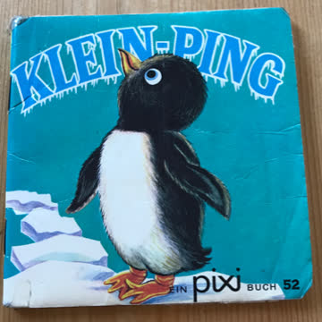 Pixi: Klein-Ping