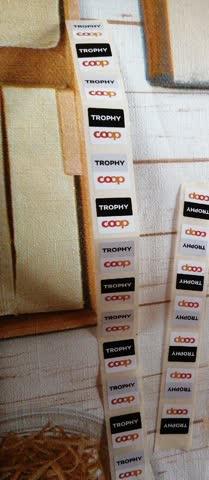 Trophy Punkte 21 Sticker