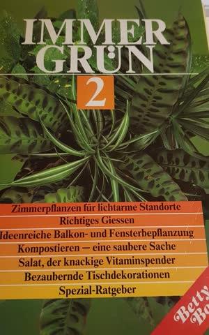 Immer Grün2