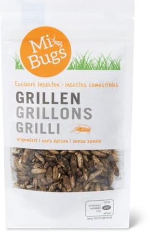 Mi Bugs Grillen (Heimchen)