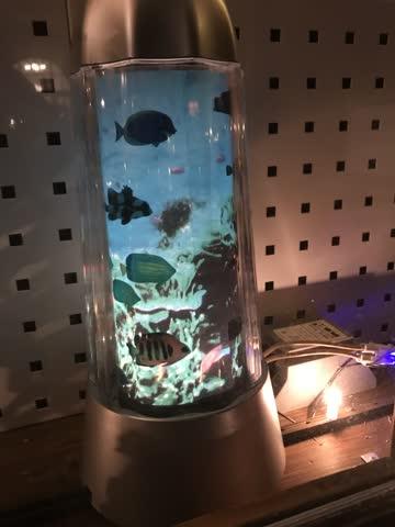 Magma Lamp Aquarium