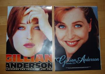 2 Kalender von Gillian Anderson