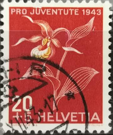 1943 PJ Frauenschuh gestempelt