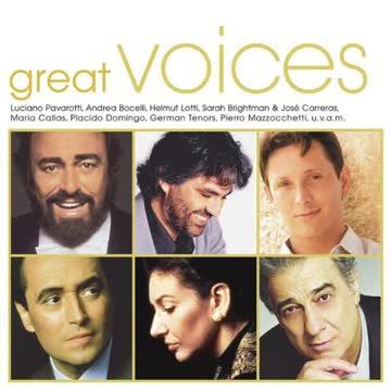 Diverse Interpreten - Great Voices