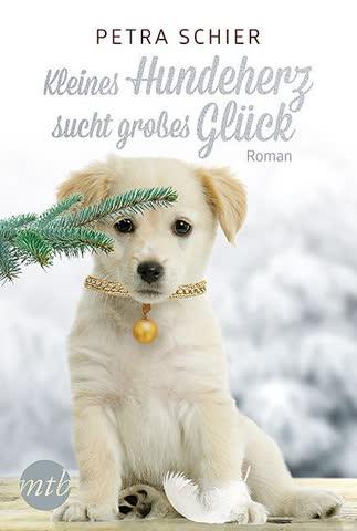 Kleines Hundeherz sucht grosses Glück