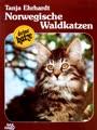 Norwegische Waldkatzen - Kauf/Haltung/Pflege