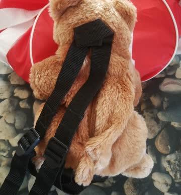 Bären Rucksack