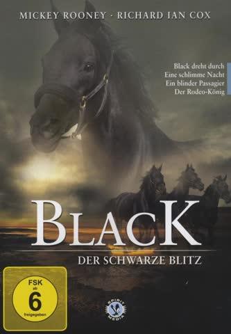 BLACK - der schwarze Blitz 2