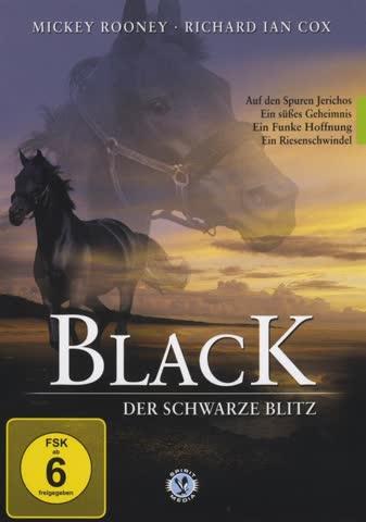 BLACK - der schwarze Blitz 3