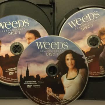 Weeds Season Seven