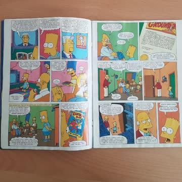 Simpsons Sommer Sonderheft