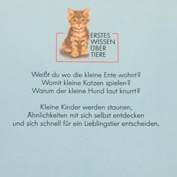 Kennst du die kleine Katze?
